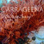 Carrageenan